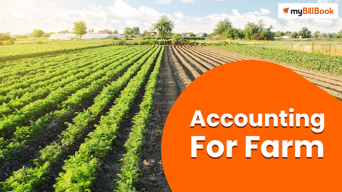 accounting for farm